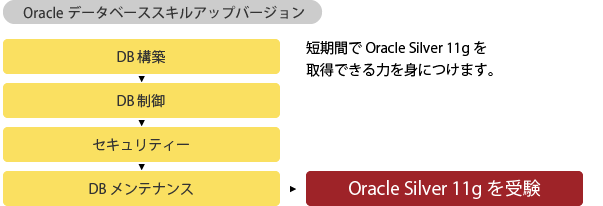 Oracle Master Bronze DB構築からOracle Silver 11gを受験までのながれ